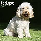 Cockapoo Calendar - 2016 Wall Calendars - Dog Calendars - Monthly Wall Calendars by Avonside