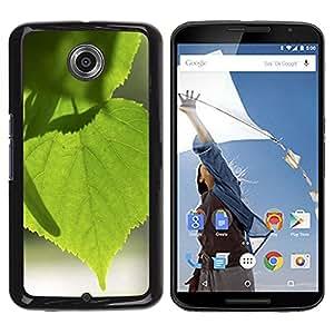 Be Good Phone Accessory // Dura Cáscara cubierta Protectora Caso Carcasa Funda de Protección para Motorola NEXUS 6 / X / Moto X Pro // Tree Green Nature Sun Leaf