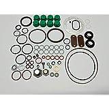 Roosa Master/Stanadyne seal kit 24371 for DB/JDB/DC Diesel Injection Pumps
