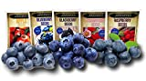 Fruit Combo Pack Raspberry, BlackBerry, Blueberry, Strawberry, Apple (Organic) 975+ Seeds UPC 600188190564 + 5 Free Plant Markers & 3 Free Packs of Blueberry Seeds