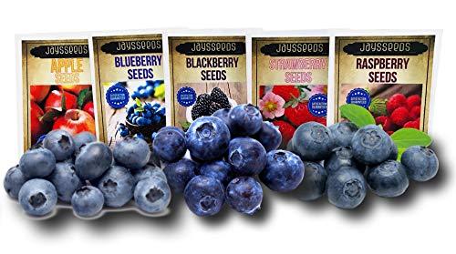 Fruit Combo Pack Raspberry, BlackBerry, Blueberry, Strawberry, Apple (Organic) 975+ Seeds UPC 600188190564 + 5 Free Plant Markers & 3 Free Packs of Blueberry Seeds