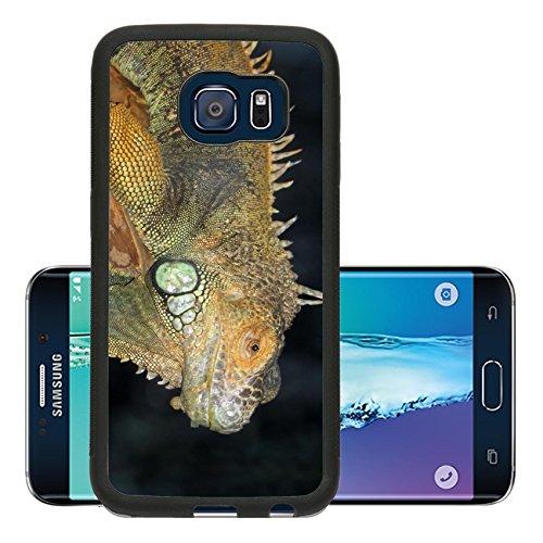 Liili Premium Samsung Galaxy S6 Edge Aluminum Backplate Bumper Snap Case A Macro Shot Of A Beautiful Iguana Photo 530241