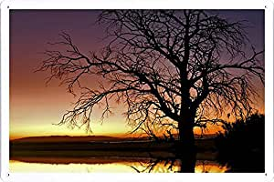 "Planet Scene Poster - Tree Evening Branches Reflection Lake Ripples 26650 Tin Sign (8""x12"")"