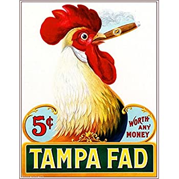 1905 Tampa Fad Rooster Chicken Vintage Cigar Box Label Advertisement Art Print