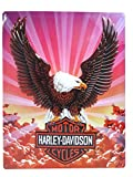 Harley-Davidson® Eagle Metal Sign