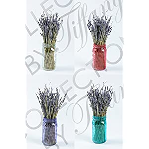 Real Natural Lavender bunch Dried Flower Decorative Flowers Bouquet for Home DIY Floor Garden Office Wedding Decor (1bunch) with Trendy Mason Jar Flowers Vase USA 64