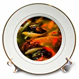 3dRose Danita Delimont - Fish - Crowded pond with Orange Koi fish, Yuyuan Garden, Shanghai, China - 8 inch Porcelain Plate (cp_257100_1)