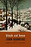 img - for Black Cat Bone: Poems book / textbook / text book