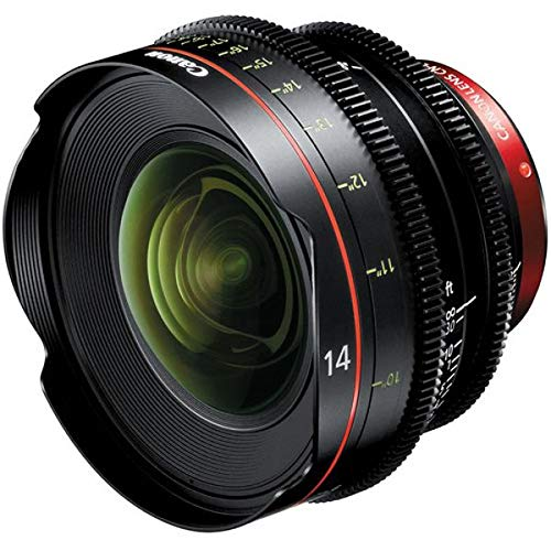 Canon CN-E 14mm T3.1 L F Cinema Prime Lens (EF Mount) [Electronics]