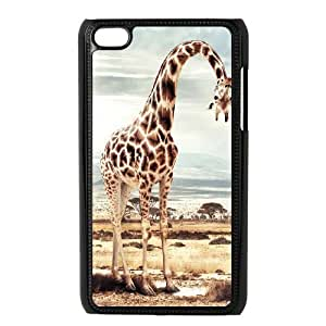 Ipod Touch 4 Animals Phone Back Case Art Print Design Hard Shell Protection YT076598