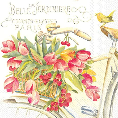 Celebrate the Home Floral 3-Ply Paper Luncheon Napkins, Bella La Jardiniere, 20 Count