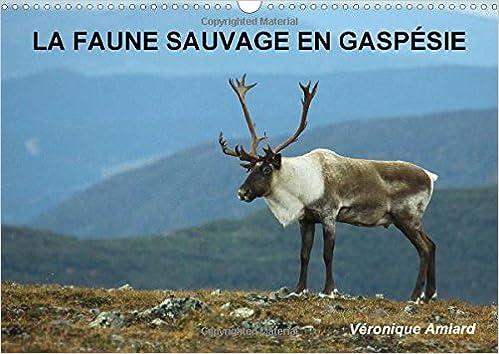 Livre gratuits La Faune Sauvage En Gaspesie: Bienvenue Dans Le Monde Des Animaux Sauvages Peuplant Un Pays De Reve ! epub pdf