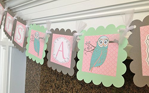 PARTY PACK SPECIAL - Whimsical Woodland Owl It's A Girl Baby Shower Collection - Light Pink Damask & Mint Green, Gray and White Accents - Party Packs Available]()
