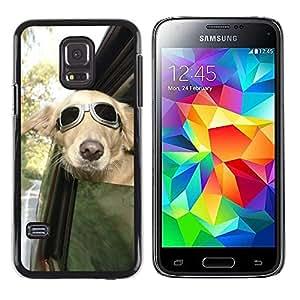 Paccase / SLIM PC / Aliminium Casa Carcasa Funda Case Cover - Pilot Sunglasses Car Window Wind - Samsung Galaxy S5 Mini, SM-G800, NOT S5 REGULAR!