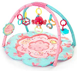 Bright Starts Petals and Friends Activity Gym (Discontinued by Manufacturer)