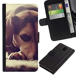 Beagle Puppy Small Dog Foxhound - la tarjeta de Crédito Slots PU Funda de cuero Monedero caso cubierta de piel Samsung Galaxy Note 3 III