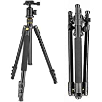 Neewer Portable 62inch/158cm Alluminum Alloy Camera Tripod with 360 Degree Ball Head, 1/4 Quick Release Plate, and Bubble Level, Load capacity 17.6lbs/8kg(Golden)