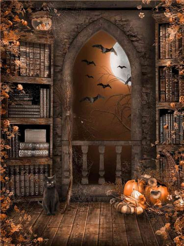 GladsBuy Alone Cat 5' x 7' Computer Printed Photography Backdrop Halloween Theme Background DGX-133 -
