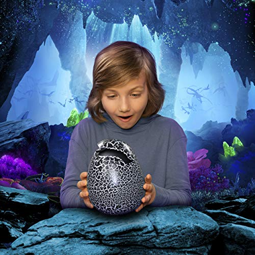 51f80TnBxdL - Dreamworks Dragons, Hatching Toothless Interactive Baby Dragon with Sounds, for Kids Aged 5 & Up