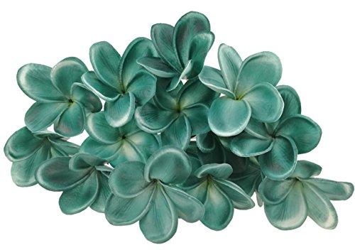 Plumeria Green - 4