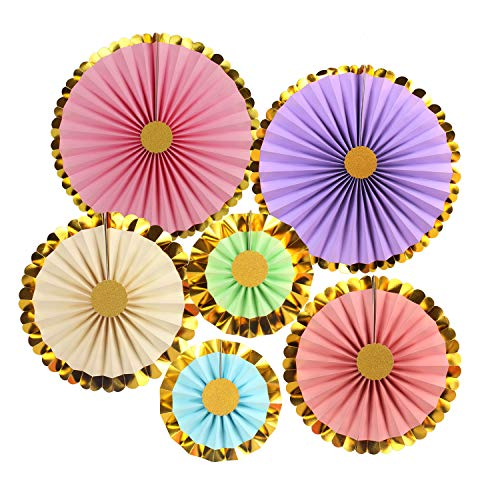 (Zilue Rainbow Party Hanging Paper Fans Decoration Set for Wedding Birthday Party Baby Showers Round Events Accessories Set of 6)
