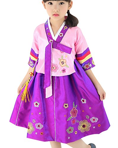 FANCYKIDS Girls Toddler Korean Hanbok Traditional Outfit Dress Costume (7 to 8 Years Old, Purple) (Costume Hanbok)