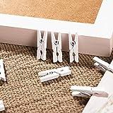 VORCOOL 100Pcs Mini Wooden Pegs Photo Paper Craft