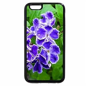iPhone 6S Plus Case, iPhone 6 Plus Case, Duranta repens Linn