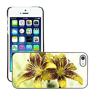 Print Motif Coque de protection Case Cover // M00155627 Lirios de Brown amarillo manchado // Apple iPhone 5 5S 5G