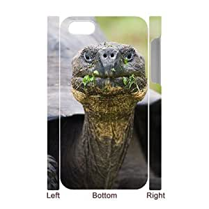 3D Case for IPhone 4/4s, Endangered Tortoises Case for IPhone 4/4s, Sexyass White