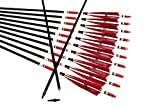 TTAD 12PCS Red Turkey Feather 31 inches Carbon Arrows Replacement Tips Targeting Arrows Archery for Recurve Longbow Hunting&Practice