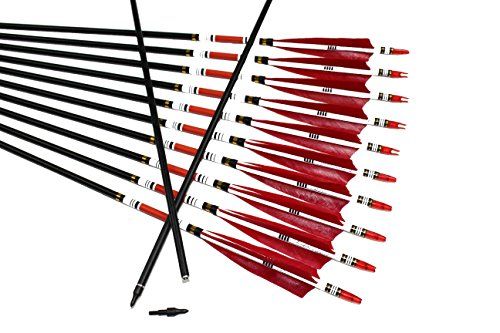 TTAD 12PCS Red Turkey Feather 31 inches Carbon Arrows Replacement Tips Targeting Arrows Archery for Recurve Longbow Hunting&Practice]()