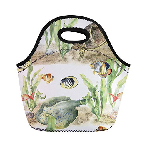(Semtomn Lunch Bags Colorful Watercolor Tropic Animals and Fish Hand Seaweeds Stingray Neoprene Lunch Bag Lunchbox Tote Bag Portable Picnic Bag Cooler Bag)