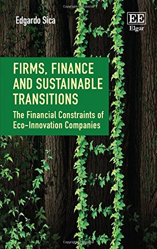 [READ] Firms, Finance and Sustainable Transitions: The Financial Constraints of Eco-innovation Companies<br />R.A.R
