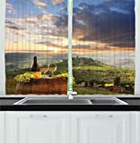 Winery Kitchen Decor Ambesonne Winery Decor Collection, Vineyard in Chianti Tuscany Italy Autumn Sunrise with Sun Lights Bursting Through Clouds Image, Window Treatments for Kitchen Curtains 2 Panels, 55 X 39 Inches