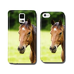 portrait fun and beautiful thoroughbred horse cell phone cover case iPhone5