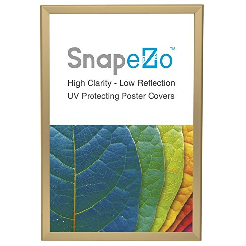 Gold Snap Frame 20x30 Inches, 1.25' SnapeZo Profile, Front Loading Quick Poster Change, Wall Mounted, Professional Series