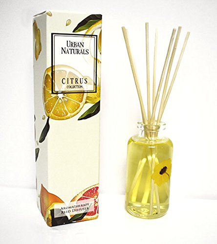 Urban Naturals Citron & Honey Home Fragrance Reed Diffuser Set | Sparkling Citron. Tangy Lemongrass. Dreamy Neroli. Golden Tupelo Honey | Best Way to Scent Your Home by Urban Naturals