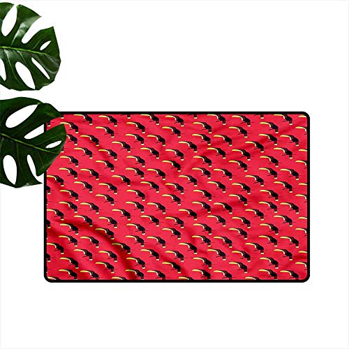 (DONEECKL Pet Door mat Tropical Exotic Toucan Bird Pattern Quick and Easy to Clean W20 xL31)