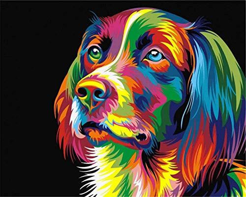 Pintar por Numeros Animales de Perro Colorido DIY Acrilica Cuadro al oleo Pintura Kit para Adultos y Ninos Principiantes con 3 Pinceles y Colores Brillantes 40x50cm Sin marco