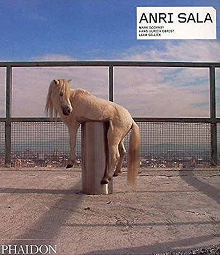 Books : Anri Sala (Contemporary Artists (Phaidon))