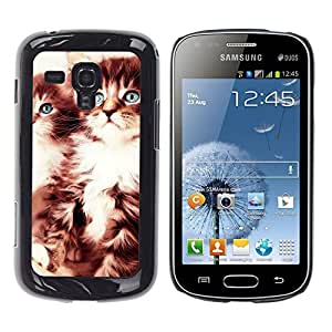 ROKK CASES / Samsung Galaxy S Duos S7562 / CUTE KITTENS / Delgado Negro Plástico caso cubierta Shell Armor Funda Case Cover