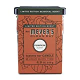 Mrs. Meyer's Clean Day Scented Soy Candle Small Glass,Pumpkin, 4.9 Ounce