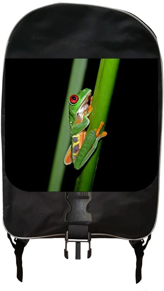 Climbing Tree Frog Backpack