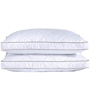 puredown Natural Goose Down Feather Sleeping 100% Cotton Pillow Cover Downproof, Standard/Queen, Gusseted 2 Pack