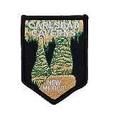 "New Mexico ""Carlsbad Caverns"" Travel Patch Park Souvenir Craft Iron-On Applique"