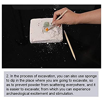 Anniston Kids Toys, DIY Faux Gem Shells Excavation Dig up Kit Educational Kids Archaeological Toy DIY Toys Perfect Fun Time Play Activity Gift for Boys Girls: Toys & Games