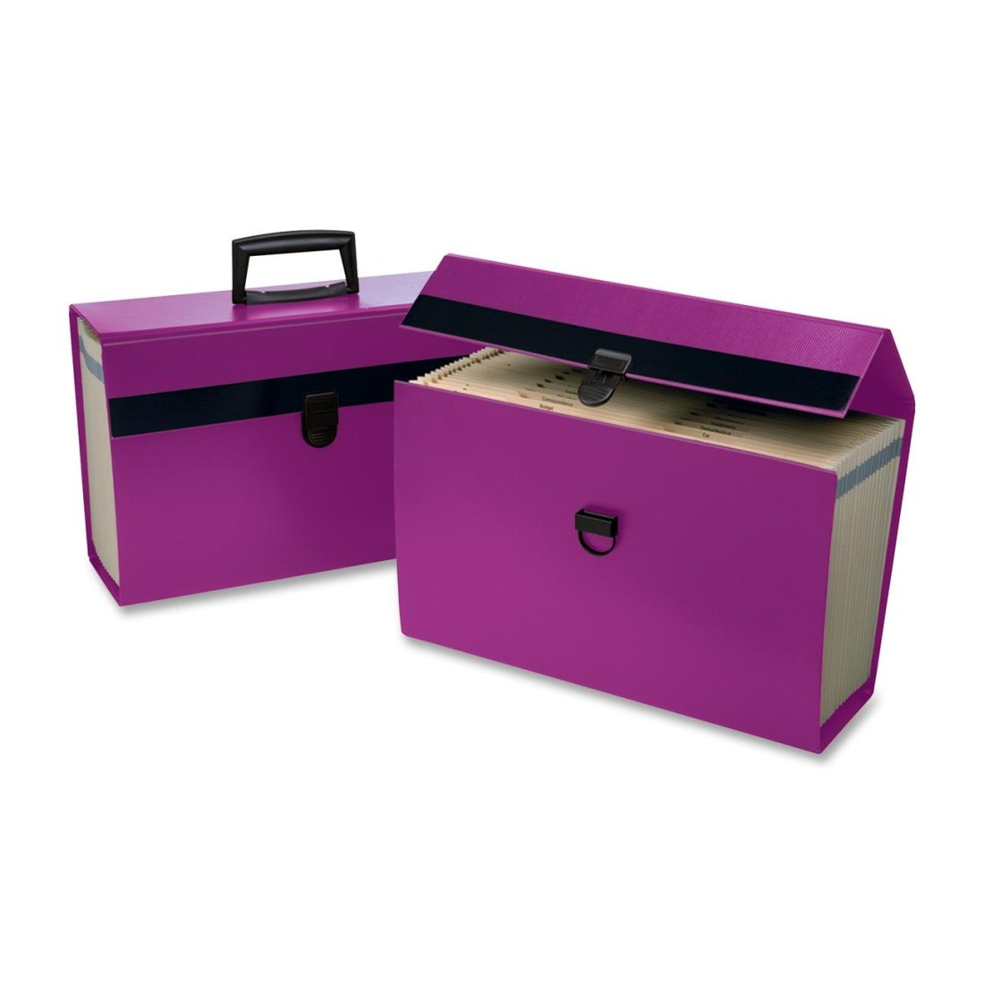 Pendaflex PFX01157 Portafile 01157 Expanding Organizer-Legal, Letter-8 1/2 x11, 8 1/2 x14 Sheet Size-5 1/2 Expansion-19 Pocket(s)-Paper-Purple-Recycled-1/Each Letter-8 1/2 x11 S.P. Richards CA