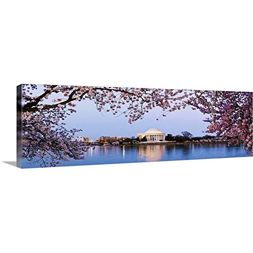 GREATBIGCANVAS Gallery-Wrapped Canvas Entitled Cherry Blossom Trees with Jefferson Memorial, Washington DC by 60