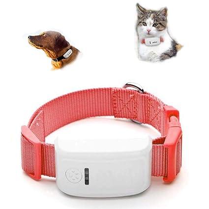 FXQIN Rastreador GPS de Perros, localizador GPS para ...